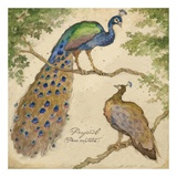 Peafowls Poster by Betty Whiteaker