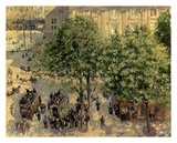 Place Due Theatre Francais, 1898 Prints by Camille Pissarro
