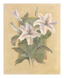 White Lilies Posters by Shari White