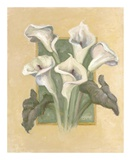 Cala Lilies Art by Shari White