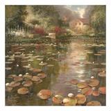 Lily Pond Plakater af K. Adams