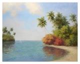 Coco De La Playa Prints by Karen Dupré