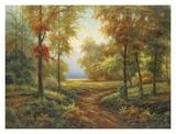 Early Autumn Path Art by  Lazzara