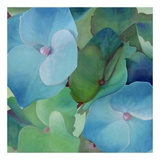 Hydrangeas Prints by Leni Betes