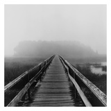 Misty Walk, Cape Cod Posters by Reid Yalom