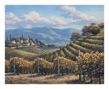 Vineyard Village Poster by Sung Kim