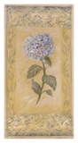 Hydrangea Toile Poster by Shari White