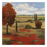 Chianti Country II Poster by Kanayo Ede