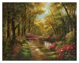 Enchanted Creek I Prints by Wesley 