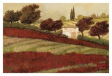 Apapaveri Toscana I Prints by Furtesen 