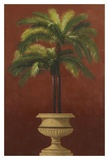 Potted Palm Red III Art by  Welby