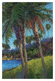 Palm Trees Prints by Kairong Liu