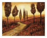 Strada Tra I Papaveri Prints by  Furtesen