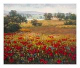 Italian Poppy Vista I Art by Ahn Seung Koo