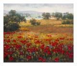 Italian Poppy Vista I Art by Ahn Seung Koo