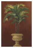 Potted Palm Red IV Posters by  Welby