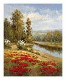 Poppy Vista I Prints by  Hulsey