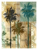 Palm II Prints by Maeve Fitzsimons