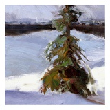 Majestic Winter (detail no. 1) Print by Kent Wallis