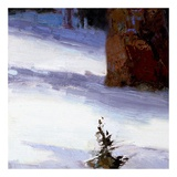 Majestic Winter (detail no. 4) Poster by Kent Wallis