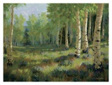 Aspen Meadow Posters by Roger Williams