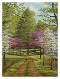 Dogwood Lane Prints by Lene Alston Casey