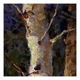 Beautiful Winter (detail no. 7) Prints by Kent Wallis