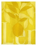 Citron Affiches