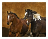 Ready To Run Prints by Robert Dawson