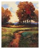 Late Noon Path I Art by Kanayo Ede