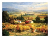 Hazy Tuscan Farm Prints by S. Hinus