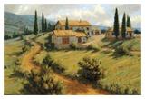 Cipresso italiano Arte di Roger Williams