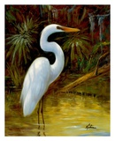 Tropical Egret I Posters by Kilian