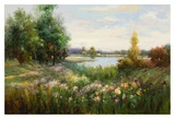 Spring Flowers and Vista Prints by  Witmer
