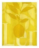 Citron Posters