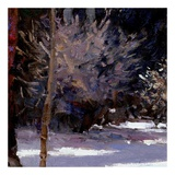 Beautiful Winter (detail no. 5) Prints by Kent Wallis
