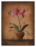 Floral Textures I Posters by  Wilbur