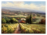 Italian Vineyards Prints by Andino