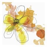 Butterfly Flower II Poster von Jan Weiss