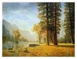 Hetch Hetchy Valley, California Print by Albert Bierstadt