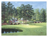 11th at Augusta, White Dogwood Print by Bernard Willington