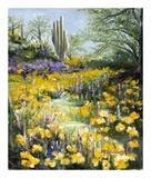 Desert Gold Prints by Mary Schaefer
