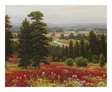 Blooms Above the Valley Posters by  Hilger