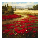 Red Poppy Trail Posters by  Hulsey