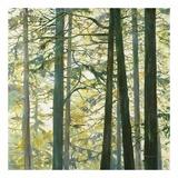 Trees in Fog I Poster af Cheryl Fortier