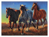 Blue Roan Ridge Prints by Nancy Davidson