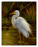 Tropical Egret II Posters by  Kilian
