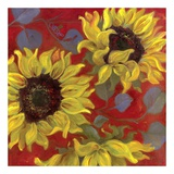 Sunflower II Posters af Shari White