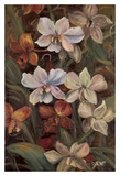 Orchids I Prints by Shari White