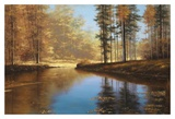 Autumn Creek Print by Diane Romanello